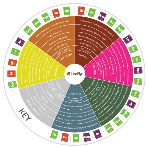 Leafly Terpene Colorwheel